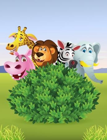 Funny wild animal cartoon Vector