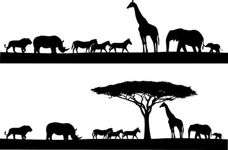 siluetas de elefantes: Safari silueta de los animales Vectores