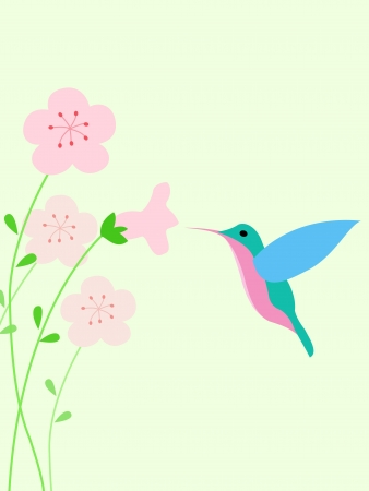 Hummingbird background Vector