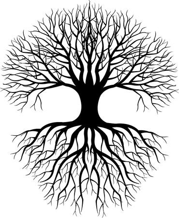 Silueta del árbol Ilustración de vector
