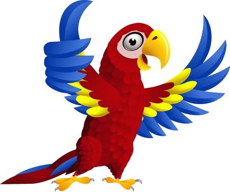 Macaw vogel met duim omhoog