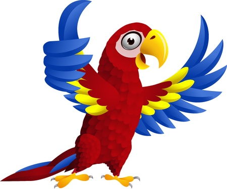 Macaw bird with thumb up