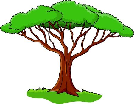 Illustration av träd isolerat på vit Illustration