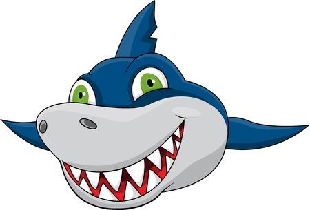 cartoon shark: Shark cara