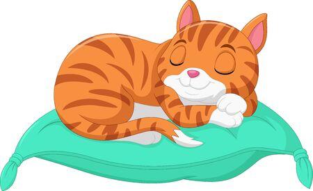 Cartoon the cat is sleeping on a pillow Çizim