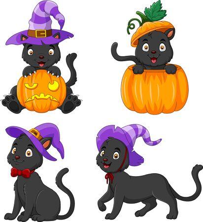 Black Cat collection with pumpkin Çizim