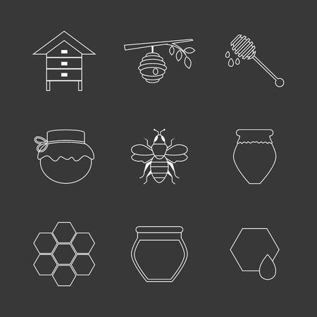 beehive: Flat design vector concept illustration with icons of  products bee-keeper and best product organic natural honey bee.  Thin line icons.