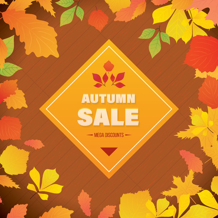 calling card: Autumn Super Sale background with colorful leafs on wood desk. Special offer. Business card, banner, calling card, flyer, poster. Vector illustration