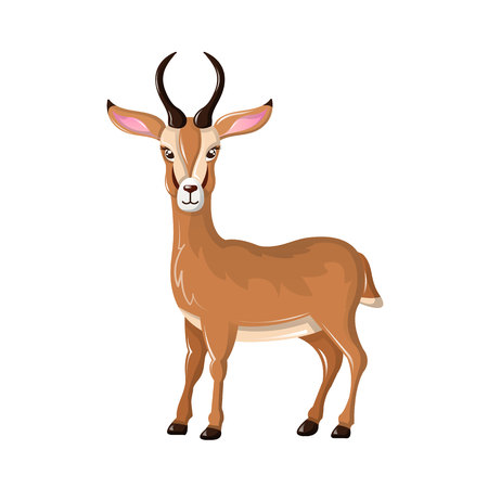Beautiful funny cartoon antelope. Cute, fast antelope with sharp horns. Herbivorous mammals animals. They live in central and southern Africa, in savannah, steppes, in plains. Vector illustration.