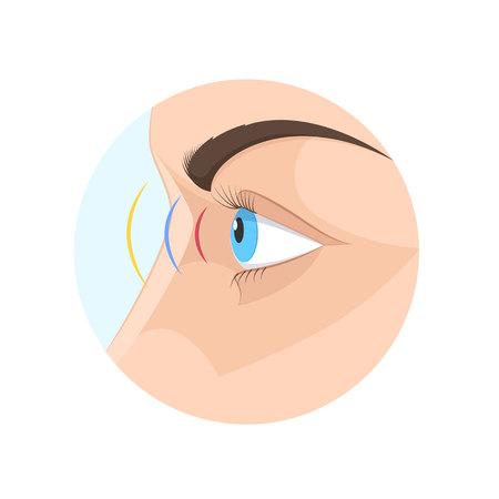 Lichaam menselijk zicht, oog. Biologie, anatomie man en menselijke organen.