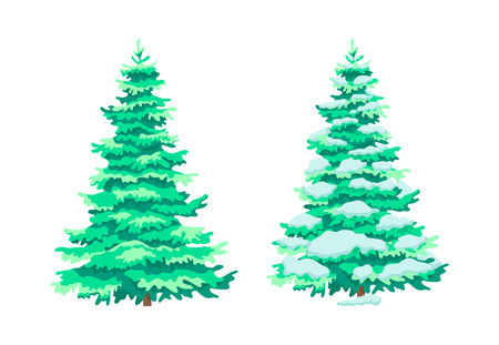 Cartoon colorful green spruce trees. Cute woody plants, eco aspen trees in summer and winter seasons. Ecology, pure nature, garden parklands landscape, new year wood. Vector illustration.