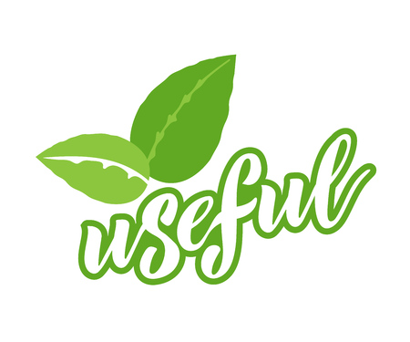 Eco  badges of useful vegetarian labels with icon, lettering.  イラスト・ベクター素材