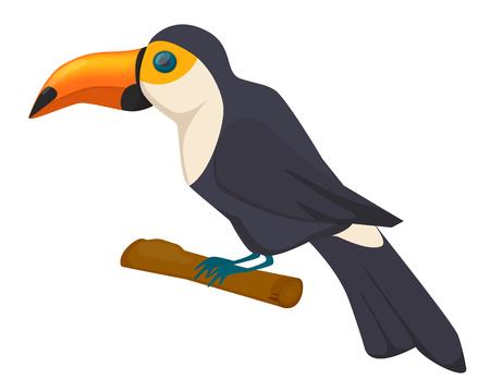 Beautiful colorful tropical bird Toucan. Exotic bird