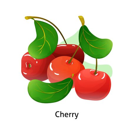 Cherry berries with leaf on white background. Ilustrace