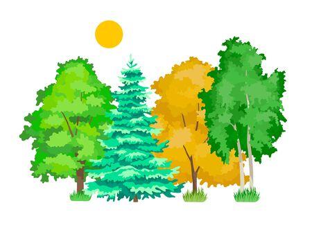 Cute woody plants, eco aspen, maple, oak, birch, spruce trees. Иллюстрация