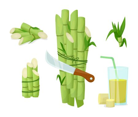 Sugarcane herb and juice. Natural organic product food