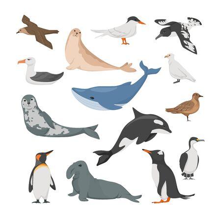 Antarctica flora. Animals, birds and sea life.