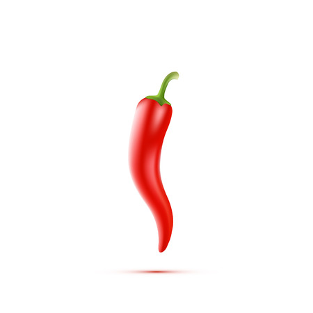 Chili Peppers isolated on white Background. Vector illustration