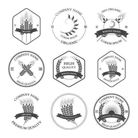Ears of wheat and rye set labels, badges and design elements. Vector illustration