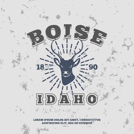 idaho: Boise, Idaho.  t-shirt graphic. Vector illustration Illustration