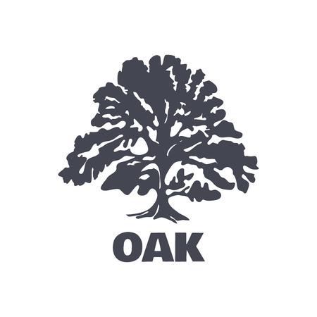 albero della vita: Oak Tree Logo Silhouette isolato. Illustrazione vettoriale