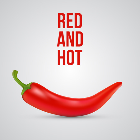 hot pepper: Red hot chili pepper isolated. Vector illustration