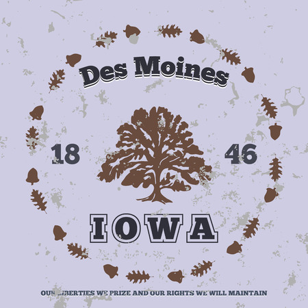des: Des Moines, Iowa. t-shirt graphic. Vector illustration