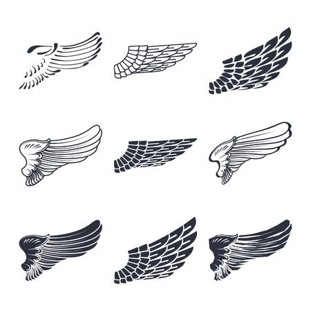 alas de angel: Conjunto de alas aisladas en blanco ilustración vectorial