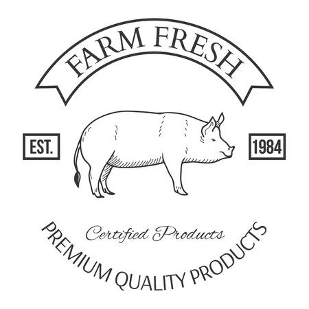 Set of agriculture vector label design elements Illustration Stock fotó - 44329725