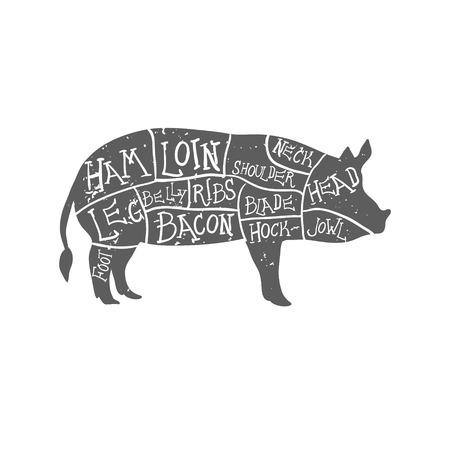 carnicero: Cortes americanos de carne de cerdo, carnicero dibujado a mano tipográfica vendimia corta esquema