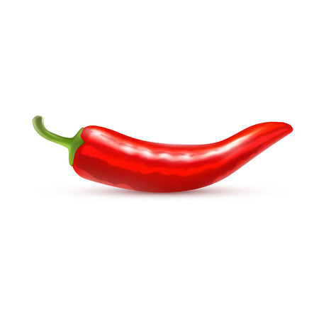 red pepper: Red Pepper Isolated on White Background Vector Illustration Illustration