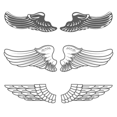 bird  celtic: Set of wings isolated on white vector illustration