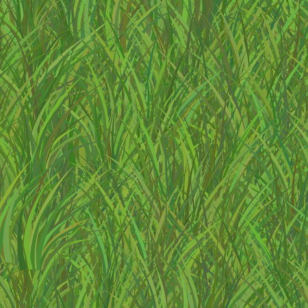 Green Grass Seamless Pattern Background. Vector illustration Illustration