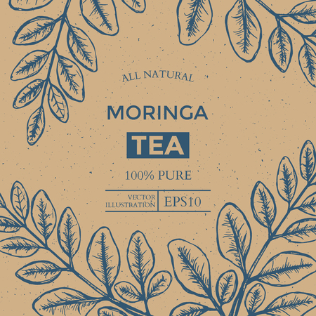 Moringa Tea Package Design Template with Hand Drawn Leaves. Vector illustration Illustration