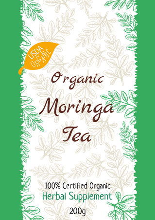 Moringa Tea Package Design Template with Hand Drawn Leaves. Vector illustration Stock Photo