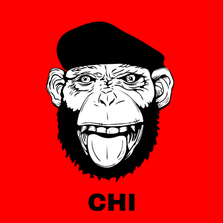 Hand Drawn Smiling Monkey with Beret for t-shirt or other use. Vector illustration