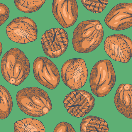 Hand Drawn Nutmeg Seamless Pattern Engrave Sketch. Vector illustration Zdjęcie Seryjne - 91745541