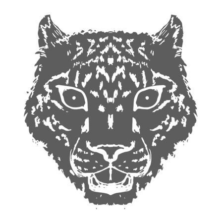 Snow Leopard Roar face or head. Hand drawn Leopard Head animal or predator isolated on white background. Vector