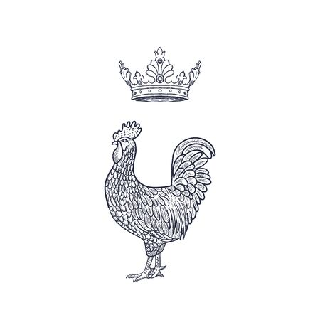 Hen or chicken with Crown hand drawn with contour lines on white background. Elegant monochrome drawing of domestic farm poultry bird. illustration in vintage woodcut, engraving or etching style. Vector