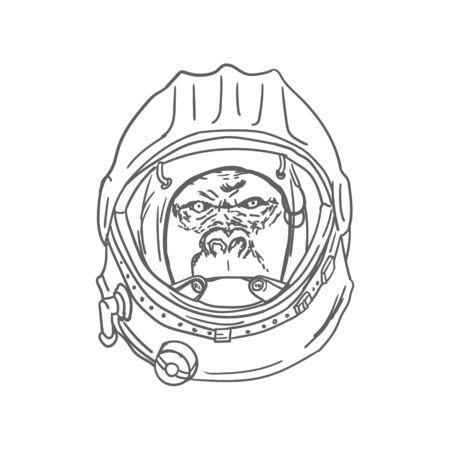 Gorilla Head in Spaceman Helmet Hand Drawn. Vector