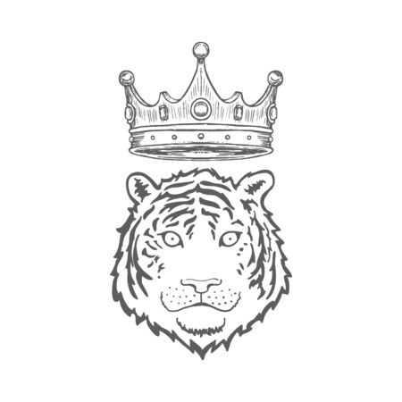 Tiger face or head. Hand drawn Tiger Head animal or predator isolated on white background. Vector