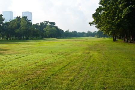 Green lawn near the big cities. Stock Photo - 8036059