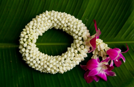 jasmine and orchid design of Thailand photo