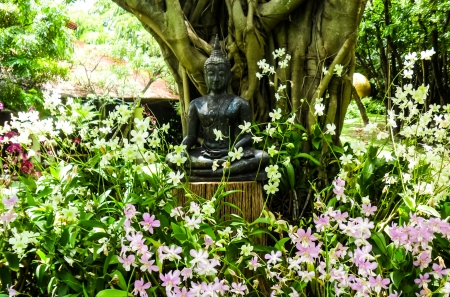 Buddha sitting under the  tree photo