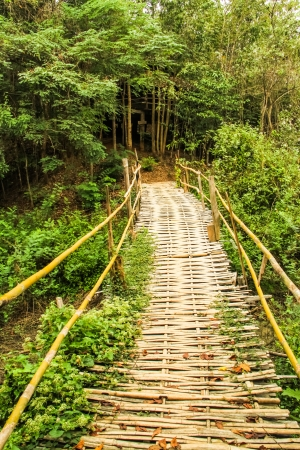 Bamboo bridge cross the river at Pai of Mae hong son Thailand photo