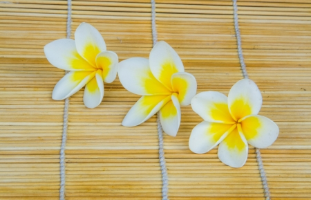 three temple flower on the bamboo wrap photo