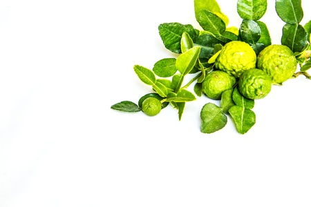 green kiffir lime and leaf on white background