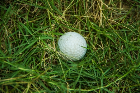 White golf on nest green grass background photo