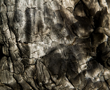 Black wood charcoal close up  texture background. photo