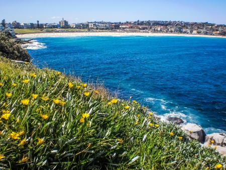 View of Bondi beach,Sydney from the hill.